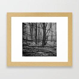 Patchwork forest Framed Art Print
