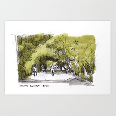 Reserva Ecologica en Buenos Aires Art Print
