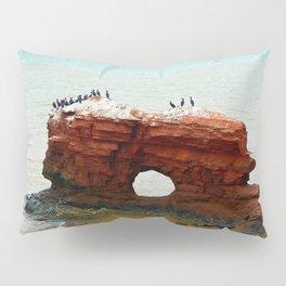 Sandstone Formation in PEI Pillow Sham
