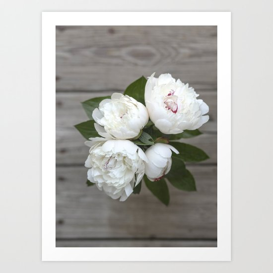 Peonies For You - White Art Print