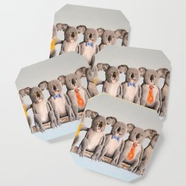 The Five Koalas Coaster
