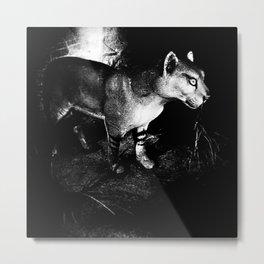 Vansda National Park 78 Metal Print