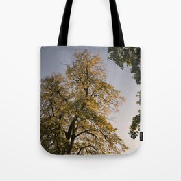 Perfect autumn-sunset colors Tote Bag
