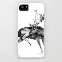 Fallow Deer Stag iPhone Case