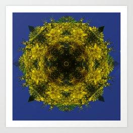 acacias-amarillas Art Print