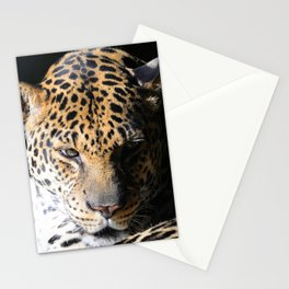 The Captivating Laser-Focus Of A Leopard's Gaze Stationery Cards