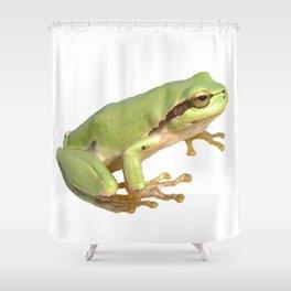 European Tree Frog Shower Curtain