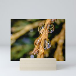 Freezing Rain III. Macro Droplets Mini Art Print