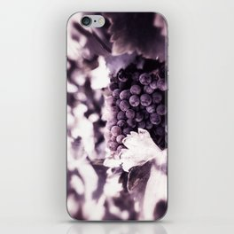 Grapes into Wine iPhone Skin