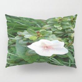 soft pink flower Pillow Sham