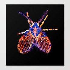 Drain Fly Inverted Canvas Print