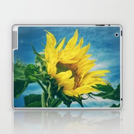 Windblown Laptop & iPad Skin