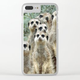 Meerkat20170501_by_JAMFoto Clear iPhone Case