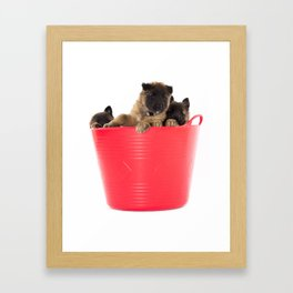 Three puppies in red laundry basket Framed Art Print