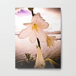 FLOWER IN THE IMMENSITY Metal Print