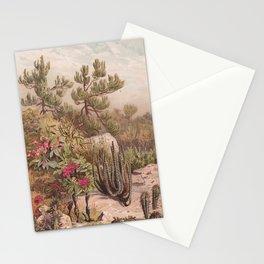 Euphorbiaceen - Cactus Stationery Cards