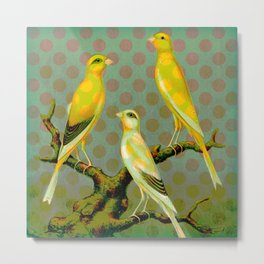 Canaries with Dots Metal Print