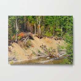 Riverside Erosion Metal Print
