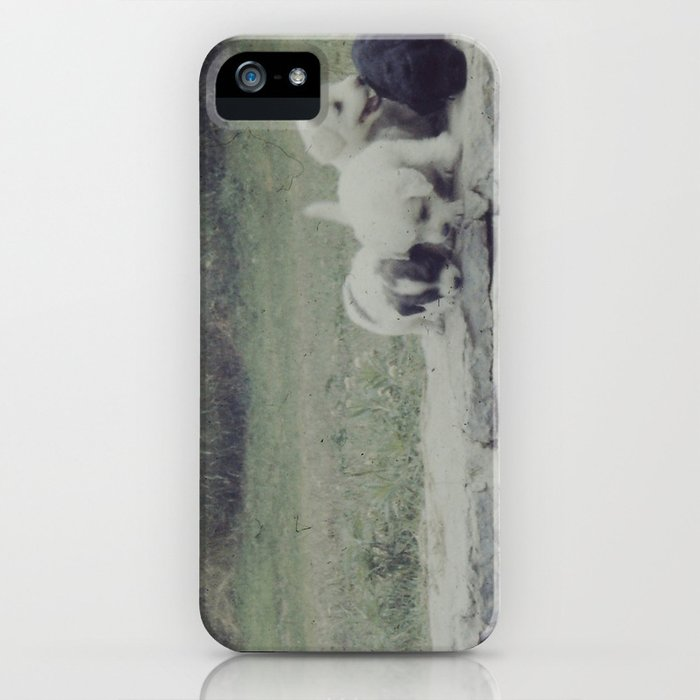 Puppies on a Wall iPhone Case