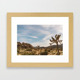 Joshua Tree National Park XXVI Framed Art Print