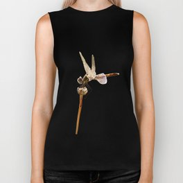 Dragonfly Resting On Seed Head Isolated Biker Tank