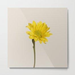 Floral Variations 7 Metal Print