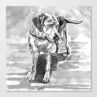 lab Canvas Prints featuring lab by Jenn Steffey