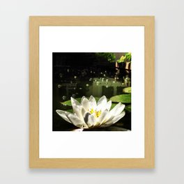 Kansan Pond Framed Art Print