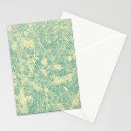 424 Stationery Cards