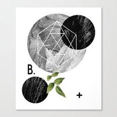 B-plus. Canvas Print