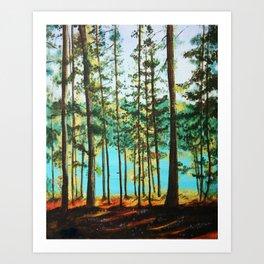 Evening Glow Art Print