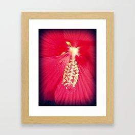 Pinky Framed Art Print
