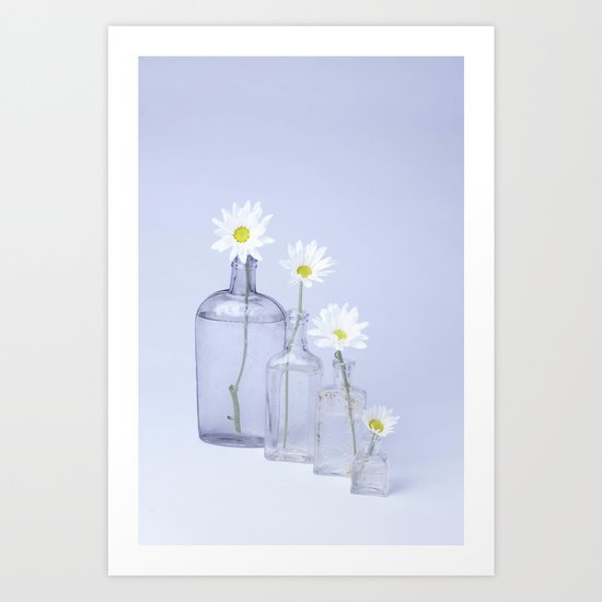 Four White Dasies  Art Print