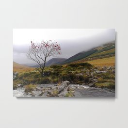Fairy pools Metal Print