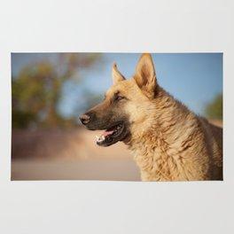 Chilean Dog Rug