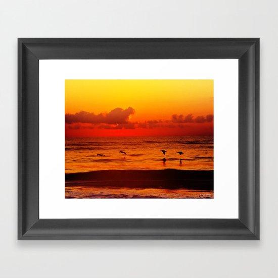 Four Pelican Sunrise Framed Art Print