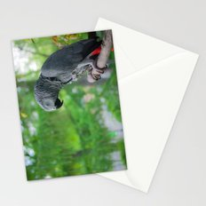 African Grey on Park Perch Stationery Cards