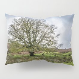 Single Exmoor Tree Pillow Sham