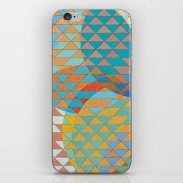 Triangle Pattern No. 11 Circles iPhone Skin