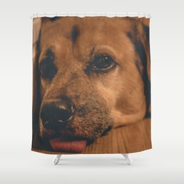 Sad Princess Dog Shower Curtain