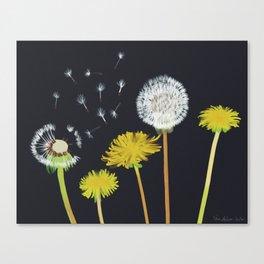 Wishful Canvas Print