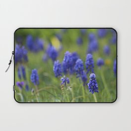 Grape Hyacinth in Spring Laptop Sleeve