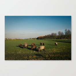 Groningen, The Netherlands Canvas Print
