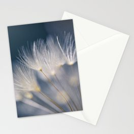 soft lights Stationery Cards