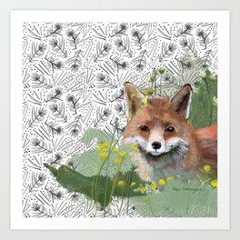 Shy Fox Art Print