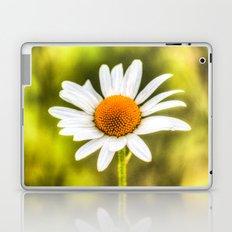 The Single Daisy Laptop & iPad Skin