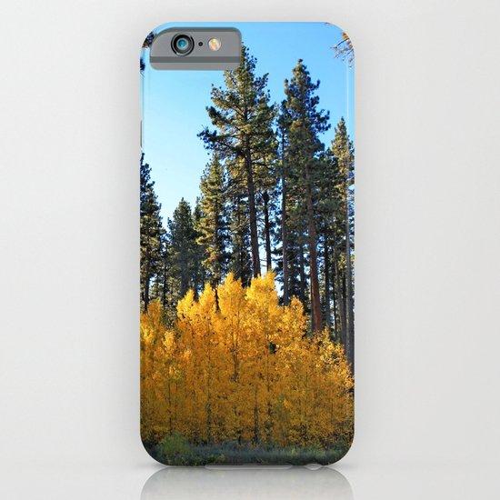 Fall Foliage iPhone & iPod Case