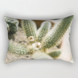 cholla cactus Rectangular Pillow