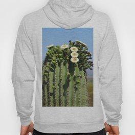 Beautiful Saguaro Blossoms Hoody