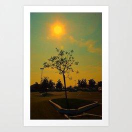 Sunlust  Art Print